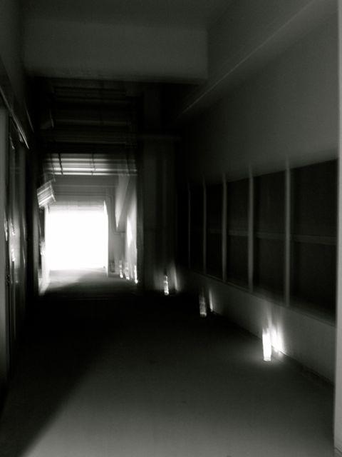 Img_3342_2